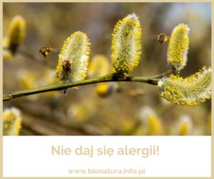 Ciesz się wiosną i nie daj się alergii!